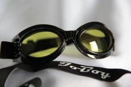 Enduro Series Goggles