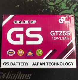 Battery GTZ5S